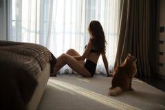 女用贴身内衣裤的可爱的妇女有坐在窗口附近的猫的 免版税库存照片