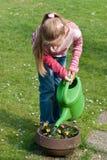 女花童浇灌 免版税库存图片