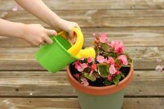 女花童盆浇灌 库存照片