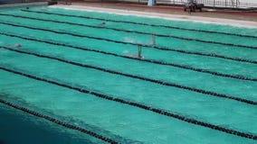 女运动员严谨地在以后的游泳竞争的仰泳训练 股票录像