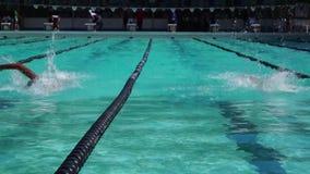 女运动员严谨地在以后的游泳竞争的自由式训练 股票视频