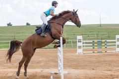 女骑士侧视图在跳高期间的 库存图片