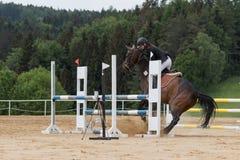 女骑士掌握一匹不服从的棕色马 免版税库存照片