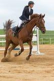 女骑士接近的侧视图一匹棕色马的 库存照片