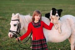 女婴年轻人 红色礼服 在马背上狗 小的白马小马 免版税库存图片