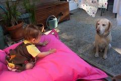 女婴和拉布拉多猎犬 库存照片