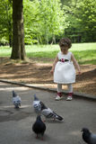 女婴哺养的鸽子 图库摄影