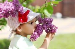 女婴嗅丁香。 免版税图库摄影