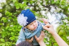 女婴在春天开花的庭院里 库存图片