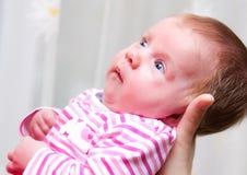 女婴新出生小 免版税库存照片