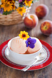 奶油色冰桃子酸奶 免版税库存照片