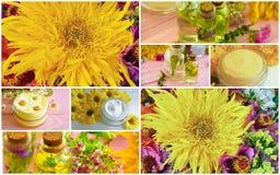 奶油色化妆用品,野花植物,秋天花束开花拼贴画 库存图片