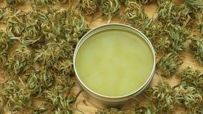 奶油色医药大麻大麻和cannabidiol CBD收获了烘干软膏的生产的种子质量,解除 股票录像