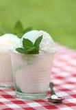 奶油色新鲜的冰薄菏室外香草 免版税图库摄影