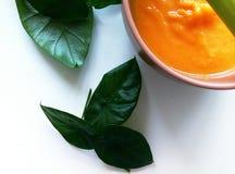 奶油色汤用南瓜和牛奶 免版税库存图片