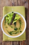 奶油色汤蔬菜 库存照片