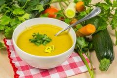 奶油色汤蔬菜 图库摄影