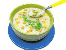 奶油色汤鲜美蔬菜 库存照片
