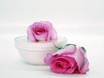 奶油色粉红色 免版税库存照片