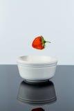 奶油色草莓 免版税图库摄影