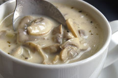 奶油色蘑菇汤 库存图片