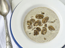 奶油色蘑菇汤 库存照片