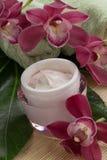 奶油色表面兰花粉红色 图库摄影