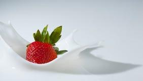 奶油色飞溅草莓 库存图片