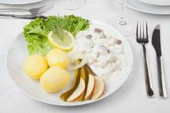奶油色鲱鱼用黄瓜、土豆和沙拉 图库摄影
