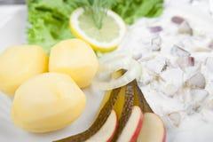 奶油色鲱鱼用黄瓜、土豆和沙拉 库存图片