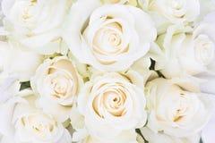 奶油豪华玫瑰完善的花束婚姻,生日或者华伦泰`的s天 顶视图 免版税库存图片