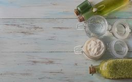 奶油,胶凝体,补品,腌制槽用食盐,与芦荟维拉片断的自创芦荟维拉香波  库存照片