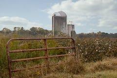 奶牛场棉花篱芭县天空路过的筒仓天 免版税库存图片
