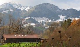 奶牛场谷仓和奥地利阿尔卑斯 免版税库存照片