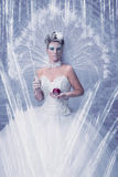 她的城堡的冰女王/王后 库存图片