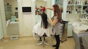 她的有打击烘干机的女性客户的专业美发师干毛发 股票视频