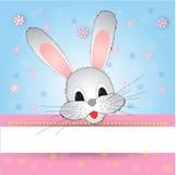 好和滑稽的兔宝宝 免版税库存图片