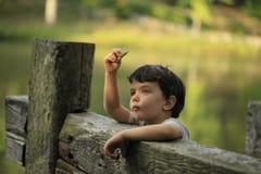 好奇地看叶子的小孩 免版税图库摄影