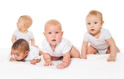 好奇看的婴孩一起连续爬行 库存照片