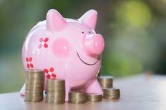 好挑剔的银行和攒钱的硬币,为投资金钱,想法以后使用 库存图片