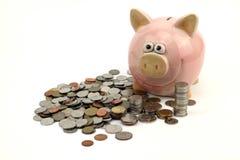 好挑剔的银行和硬币保持在白色背景的未来 库存图片