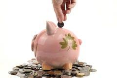 好挑剔的银行和硬币保持在白色背景的未来 免版税库存照片