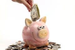 好挑剔的银行和硬币保持在白色背景的未来 免版税库存图片