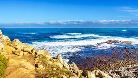 从好望角峭壁看见的大西洋的波浪  库存图片