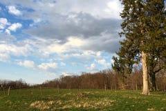 好清楚的春日在乡下在纽约 免版税库存照片