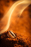好烤咖啡气味 免版税库存图片