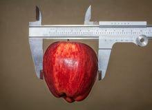 更好的健康的苹果计算机果子 库存图片