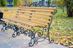 好的木,金属长凳在秋天公园 库存照片
