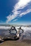 好的海风景 免版税库存照片