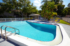 好的热带水池看法在夏天环境里 免版税库存照片